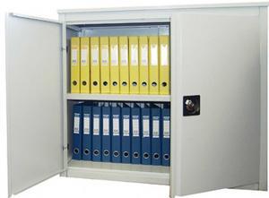 Шкаф архивный металлический для документов АLR-8896 / АLR-8810 дешево